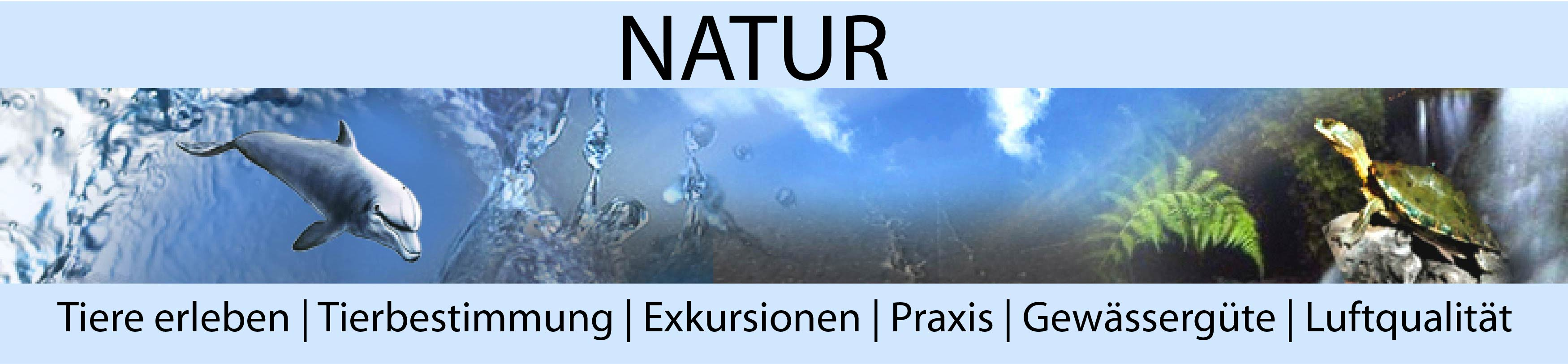Natur-gross