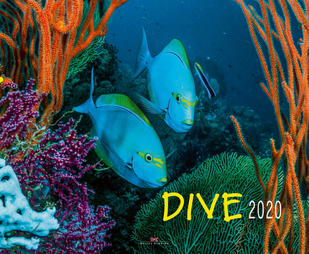 DIVE 2020 - Großformatiger Wandkalender