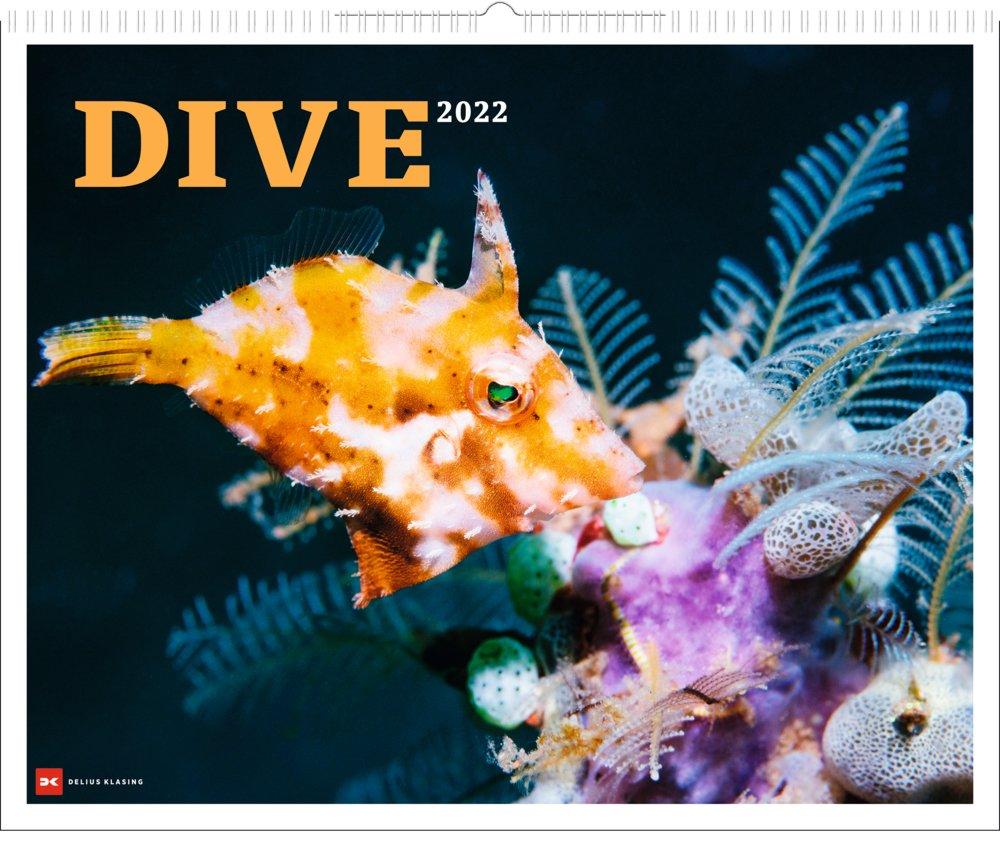 DIVE 2022  - Großformatiger Wandkalender